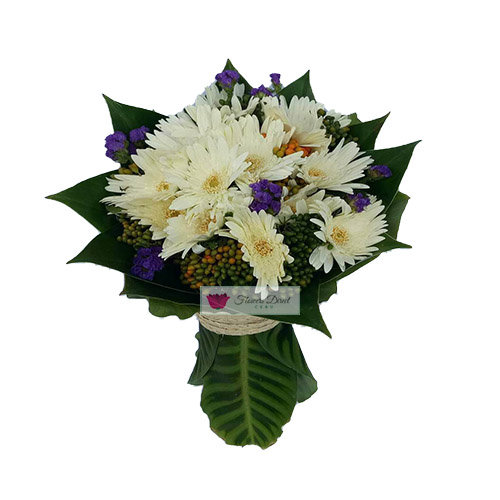 White daisy Cebu wrapped in green. White daisy flowers in a green leaf wrap.