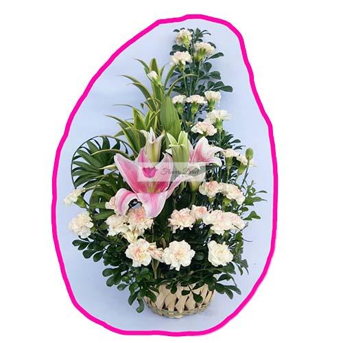 carnation lilium 19 fdcebu