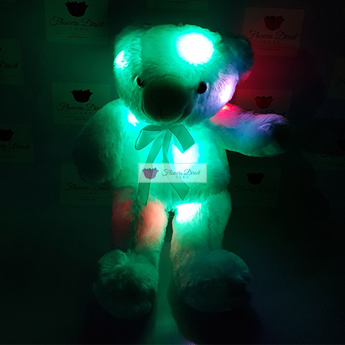 "Blue Teddy Bear Cebu Blue teddy bear Cebu, choose from 12"" or 18"". Bear lights up and batteries are included. More about Light-up Bears Brand New and High Quality, comes with batteries and tested before delivery. Colorful LED lights. Makes a great gift. Similar products that are also available; 8"", 12"", 18"" and 24"" white and pink."