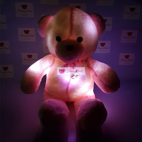 stuffed teddy bear fdcebu