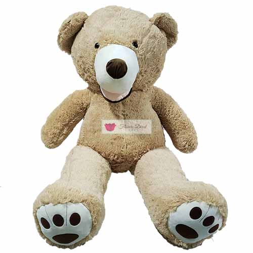 "5 Foot Teddy Bear Cebu is real and in stock. Bear is 57""-63"" actual standing length."
