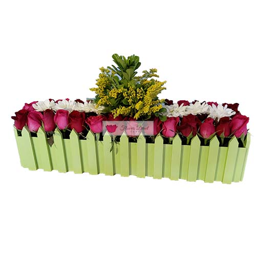 Flower box Cebu full of red and pink roses accented by yellow.