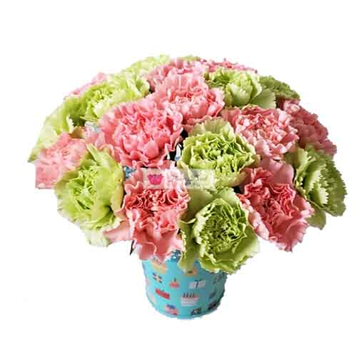Birthday Carnations Cebu 20 Pink and green carnation in a limited edition reusable metal birthday can.