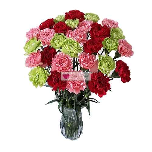Carnation Vase Cebu 30 colored carnations in a clear glass vase