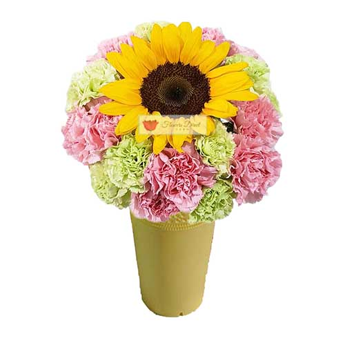 Cebu Sunrise Flowers 20 Pink and green carnations and a sunflower in a wrap or vase.