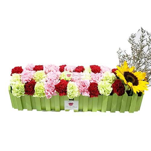 carnation flower box cebu 1a fd cebu carnations flower box cebu
