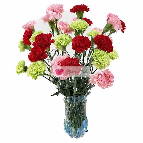 Carnation Vase Cebu 30 colored carnations in a clear glass vase. Choose all one color or combination when ordering.