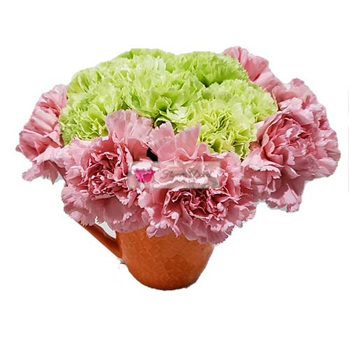 carnations cebu green pink flowers in a orange coffee cup fdcebu