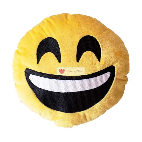 emoji pillow smile face fdcebu