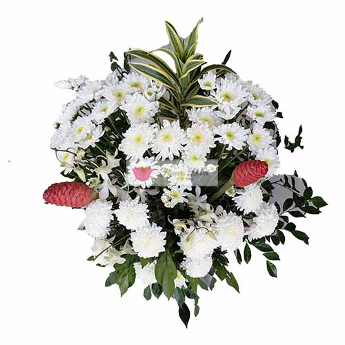 get well soon flowers cebu Bright White Flowers Cebu  is a beautiful mix of flowers in a vase.