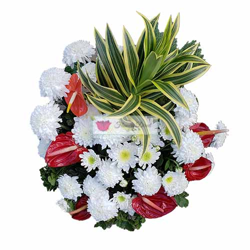 Sympathy Basket Cebu #6 , is a beautiful mix of flowers in a small basket design. You may also add a ribbon of text, just let us know in the comments section when ordering.