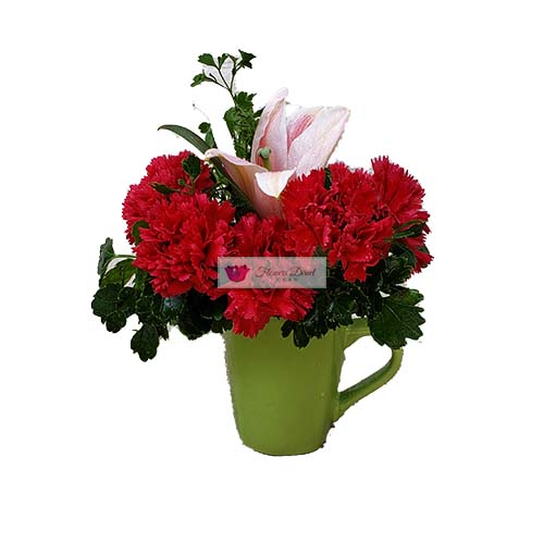Carnation Flower Cup Cebu red