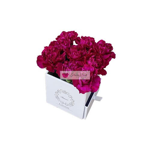 Carnations Gift Box Cebu