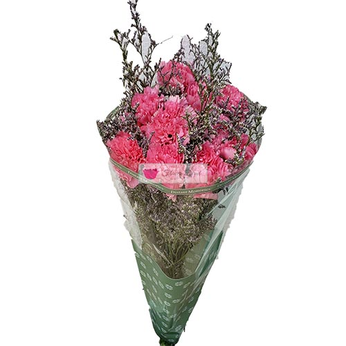 Simple Carnations Cebu, 10 carnation flowers in a simple plastic wrap